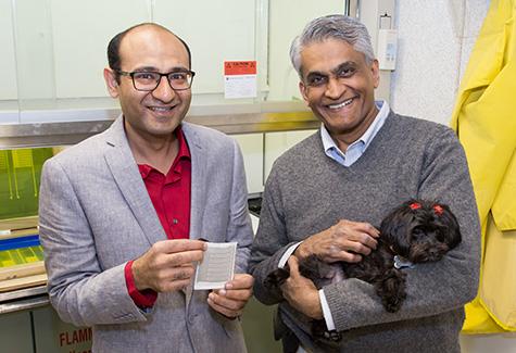 Shaurya Prakesh, Vish Subramaniam, and dog, Neli, with an electronic bandage